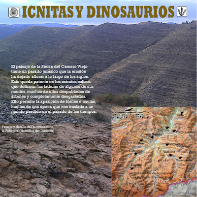 Sierra del Camero Viejo - Valle del Leza. Patrimonio Cultural y Natural. Icnitas y huellas de dinosaurio.