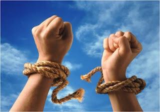 Помощь движению Пара Беллум и Народное ополчение и лично Н.М.Квачковой
