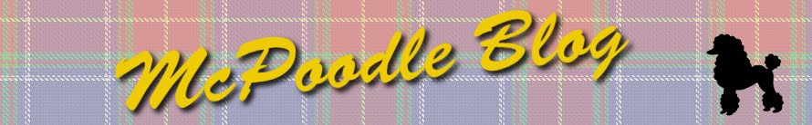 McPoodle Blog