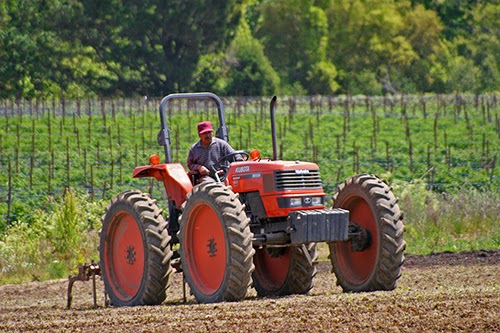 farm worker on huge tractor
