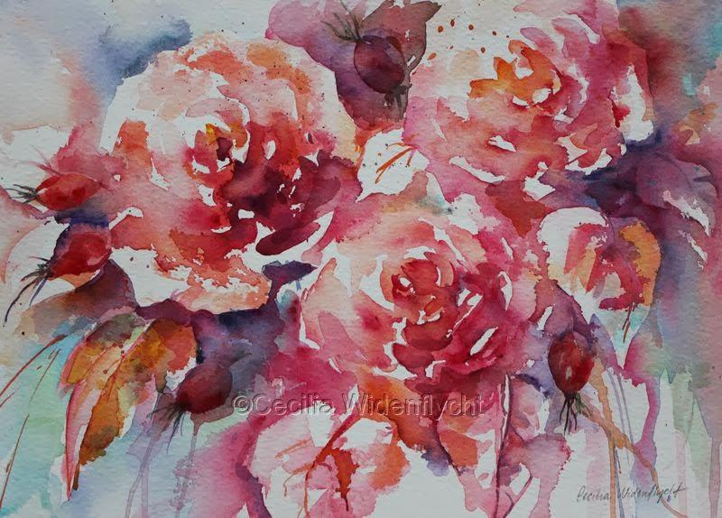 Akvareller av Cecilia Widenflycht