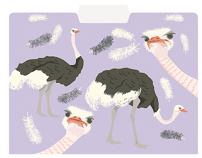 file folder with ostriches