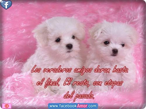 Tarjetas de Amor Imagenes románticas para enviar  - Postales Lindas De Amor