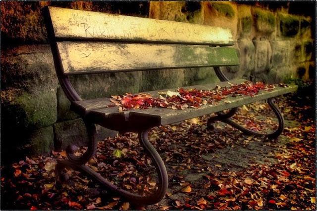 старая лавочка в осенних листьях