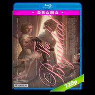 El seductor (2017) BRRip 720p Audio Dual Latino-Ingles