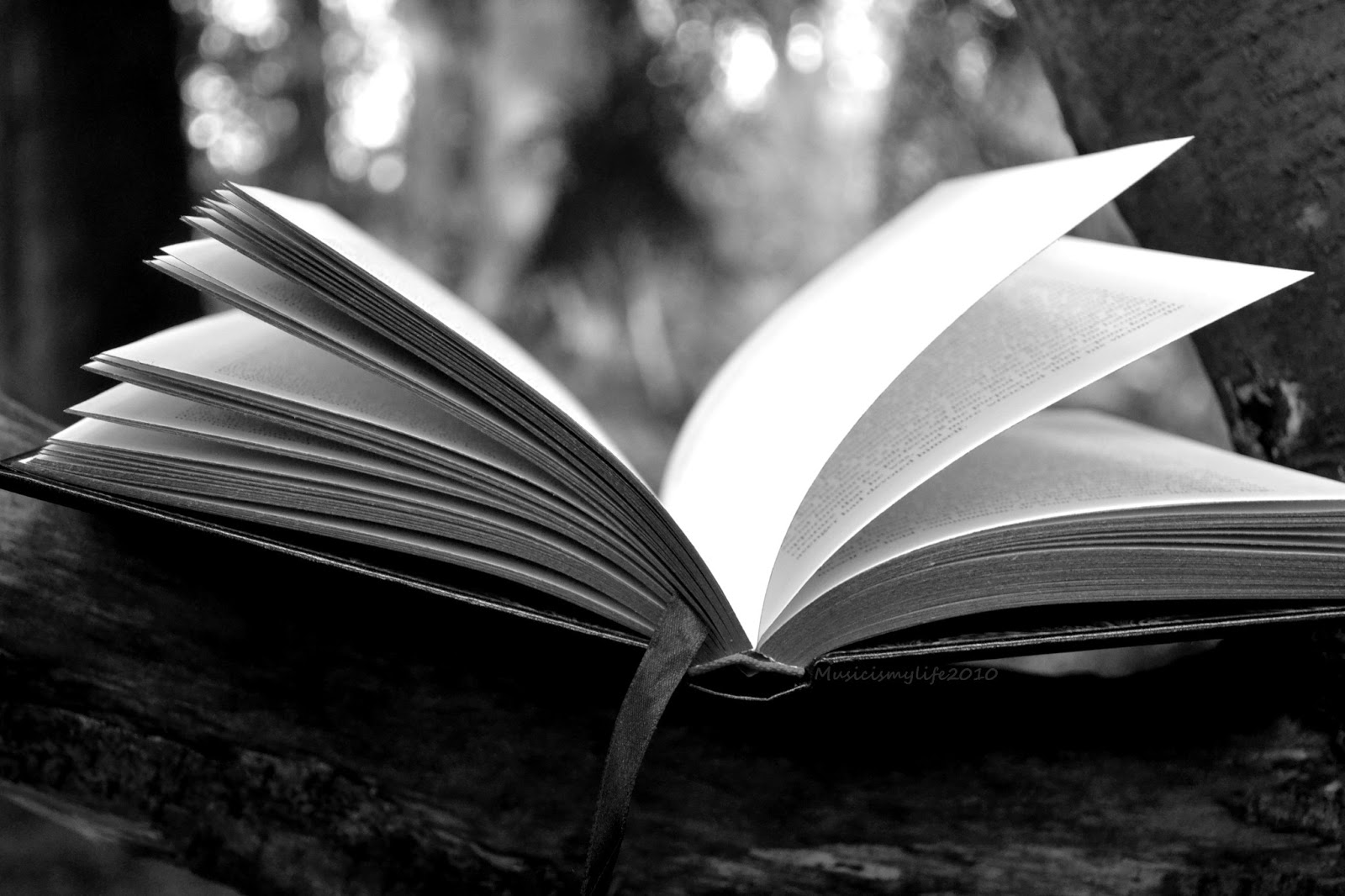 Black And White Book Photography | www.imgkid.com - The ...