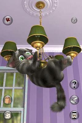 Talking Cat Free Download