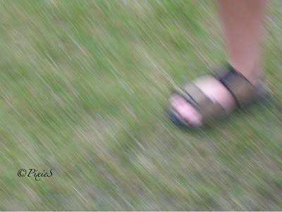 sandalklädd fot i gräs. foto: Pixie S.