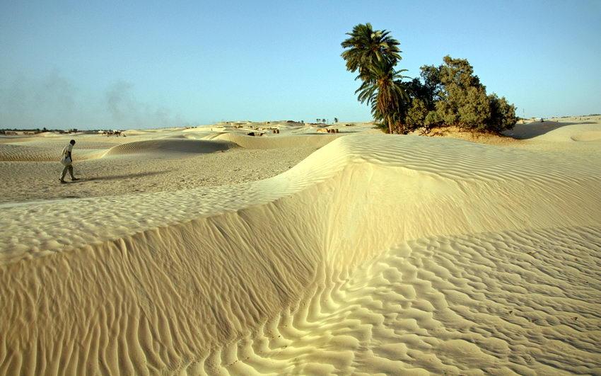 Foo de dunas  com um pequeno oásis e um homem a caminhar para ele