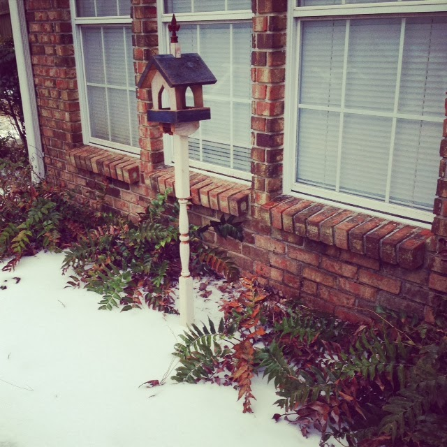 southern snow; mississippi winter; january, birdhouse in snow; snowy birdhouse