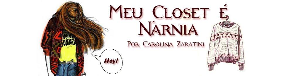 Meu Closet é Nárnia