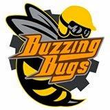 Buzzing Bugs