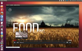 netflix ubuntu