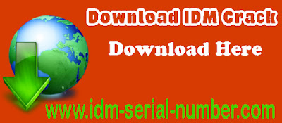 IDM 6.25 Build 7 crack