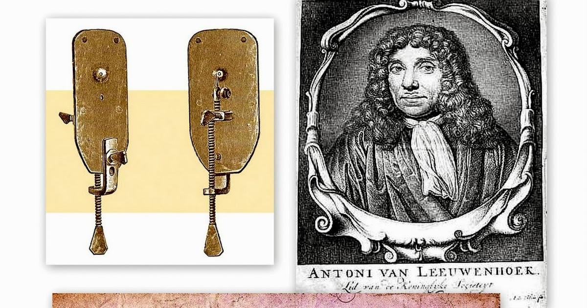 Leeuwenhoek Discoveries | www.imgkid.com - The Image Kid ...