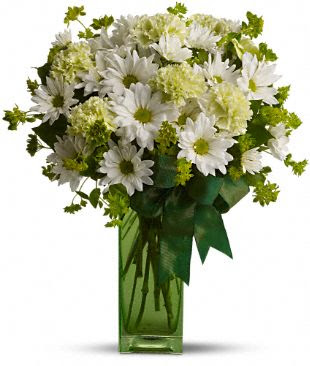 St. Patrick's Day-zies by Teleflora