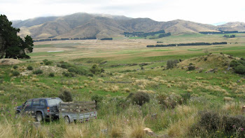 Rollesby Valley.  Mackenzie Country