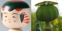 Kokeshi y el fruto de la amapola