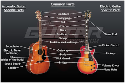 Guitar Anatomy, LEARN GUITAR, Sterted,