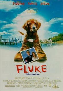 Fluke (1995) Online