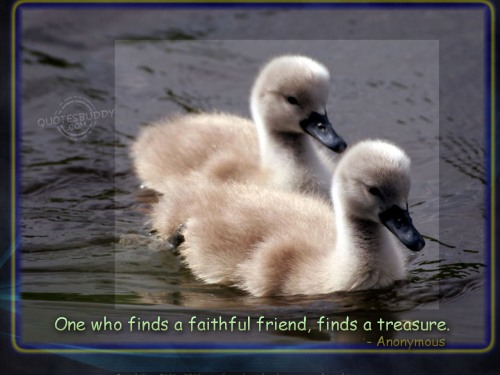 friends forever wallpapers with quotes. friendship quotes wallpapers.
