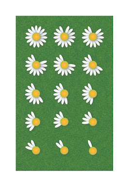 playing he loves me he loves me not with daisies