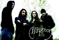 Algernon Band Photo
