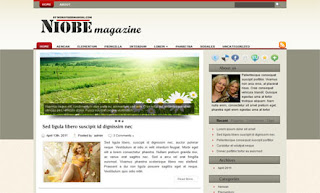 Niobe WordPress Theme
