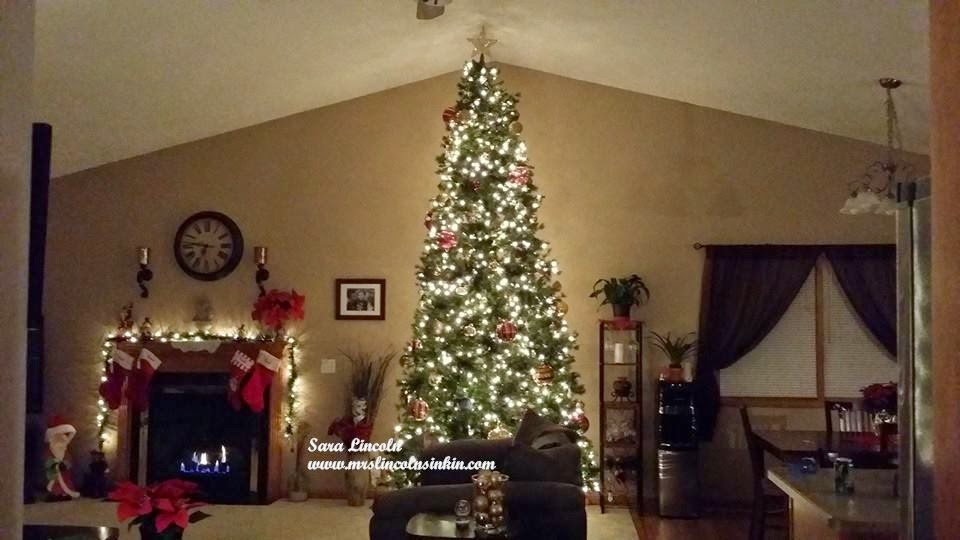 a 12 foot shimmery glittery christmas tree that touches the ceiling omgoodness the first night we got it all i did was stare at it in amazement - 12 Foot Christmas Trees