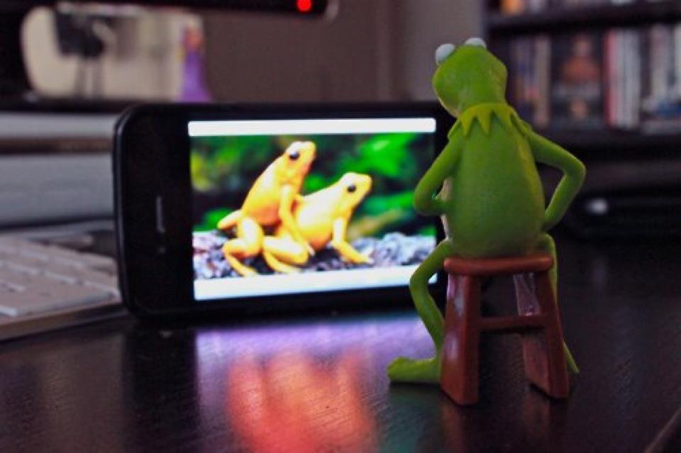 Artículos relacionados con La rana Rene viendo pornografía