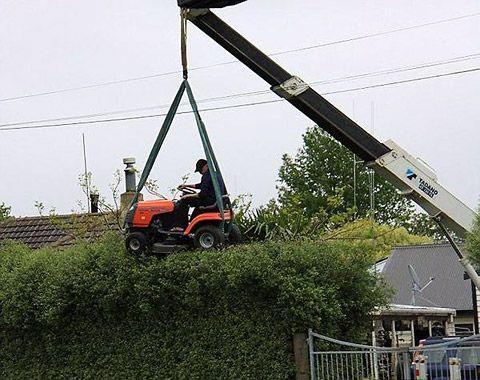 jardinero tonto
