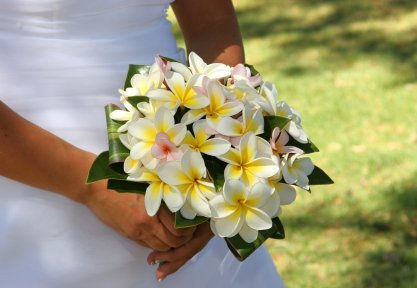 best hawaiian wedding flower