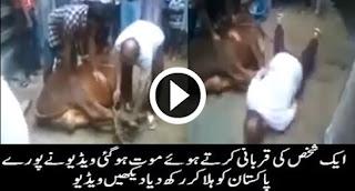 FULL VIDEO of Qassai Death on Qurbani Time
