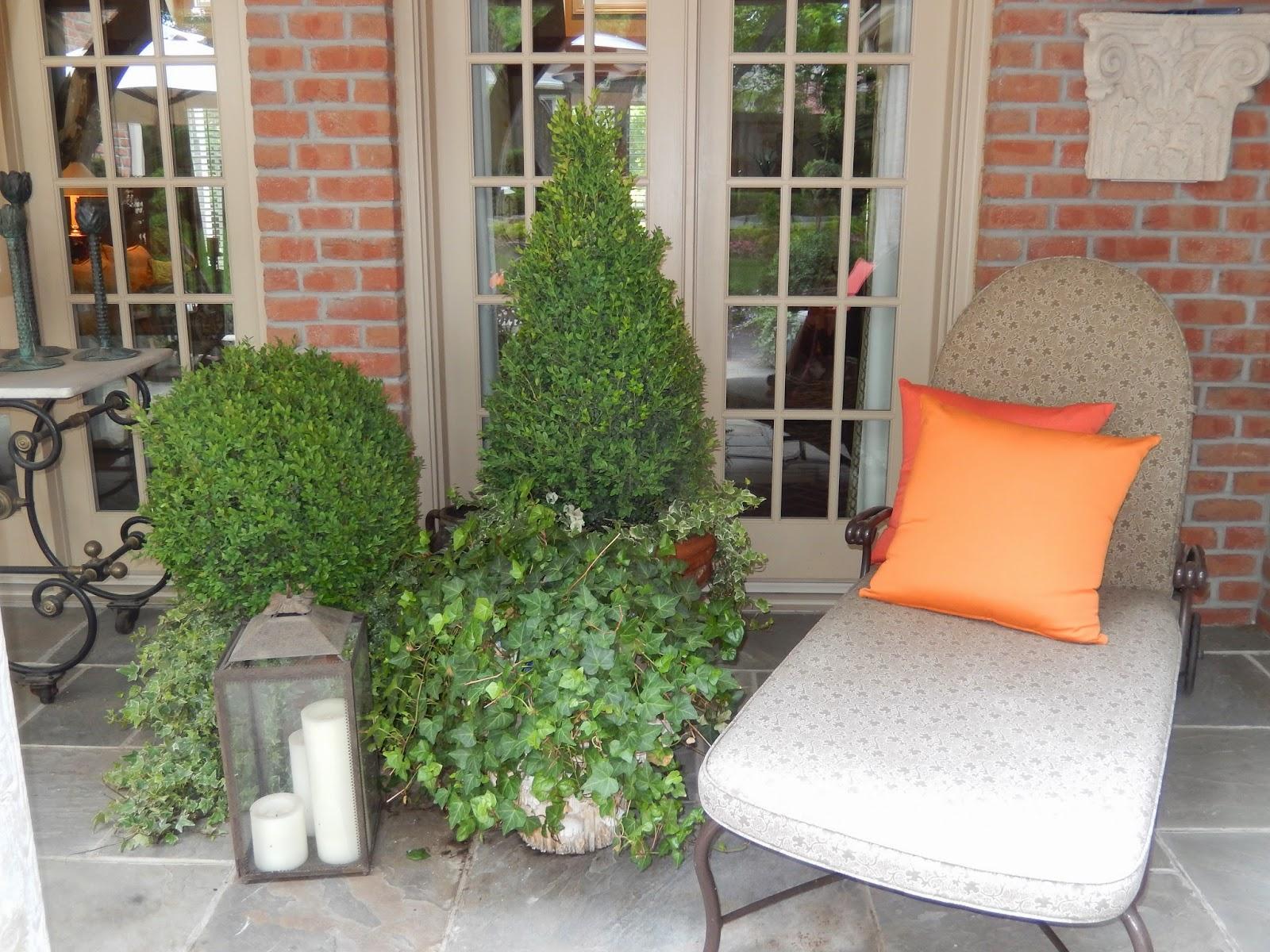 apartment plants patio climbing plants on balconies