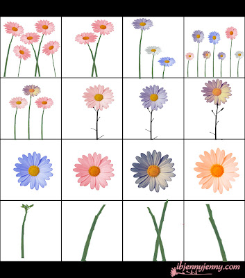 Flower PSD CutOuts