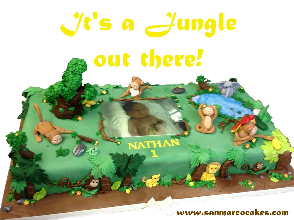 San Marco Cakes Happy Birthday Its A Jungle Out There