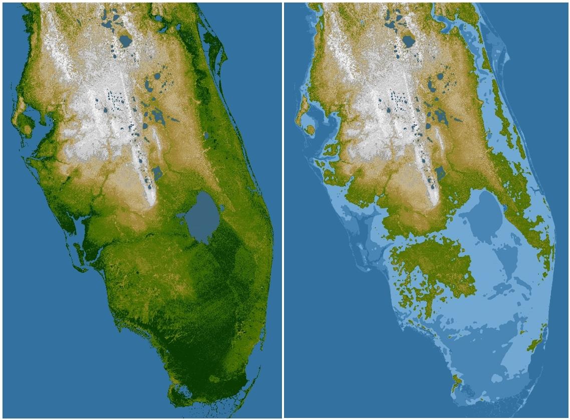 Written In Stoneseen Through My Lens August - Florida karst map