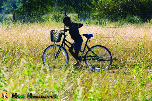 Bicicleta para passear