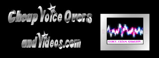 Cheap Voice Overs and Videos Horizontal Silver Text and Image Logo Larger Text