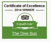 http://www.tripadvisor.com/Attraction_Review-g147278-d1062985-Reviews-The_Dive_Bus-Willemstad_Curacao.html