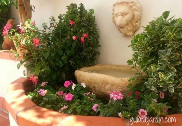 Flores en macetas guia de jardin - Calibrachoa perenne ...