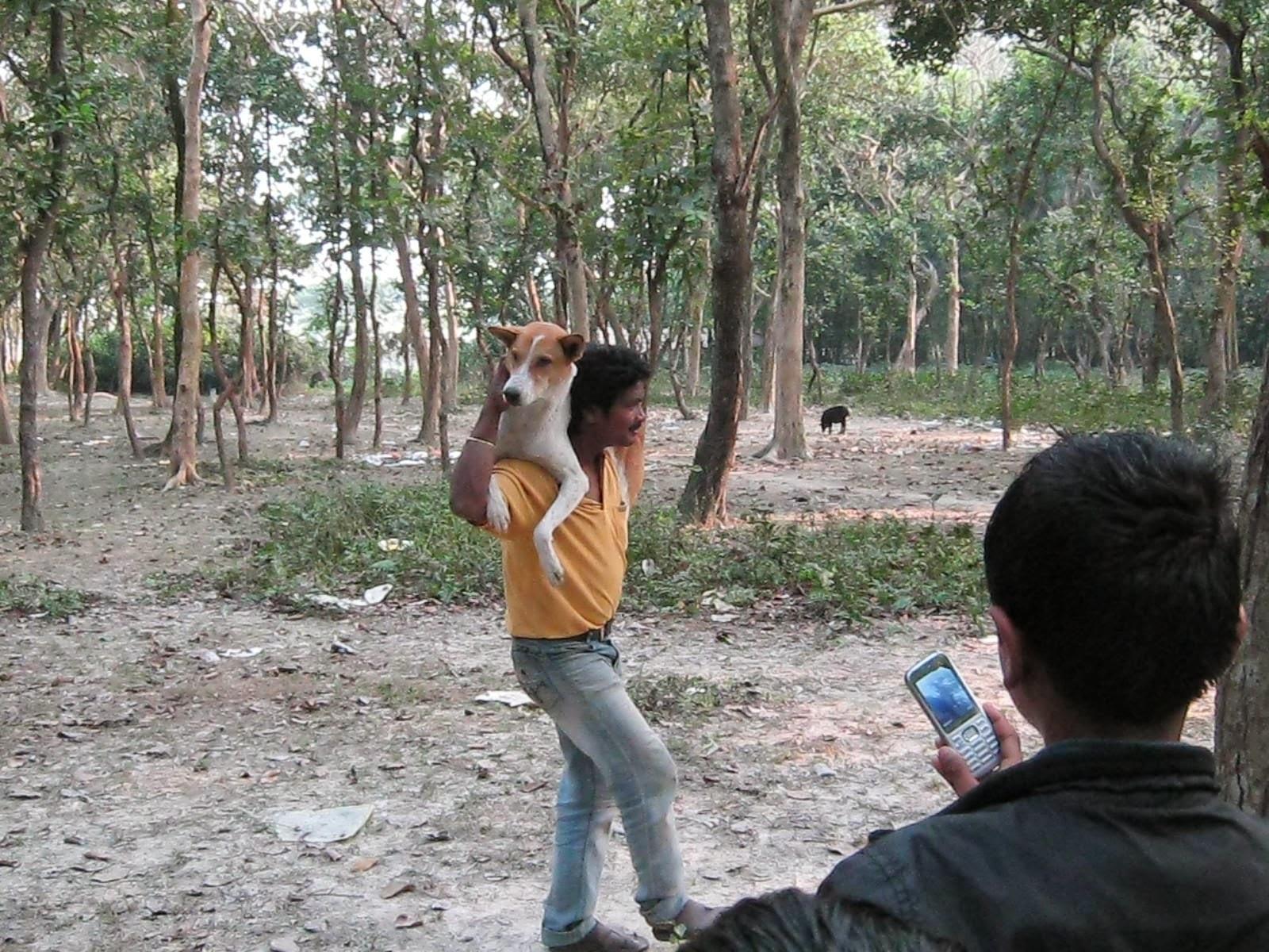 Dhamja Forest