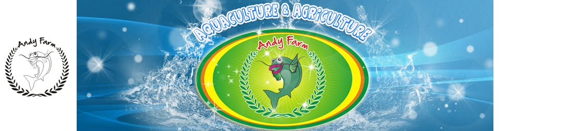 Andy Farm Cileduk