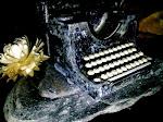 Blog Espacio Literario Caixanova