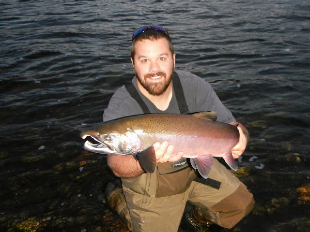 Clearwater River Coho