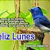 FELIZ LUNES / TARJETAS Y POSTALES CRISTIANAS GRATIS