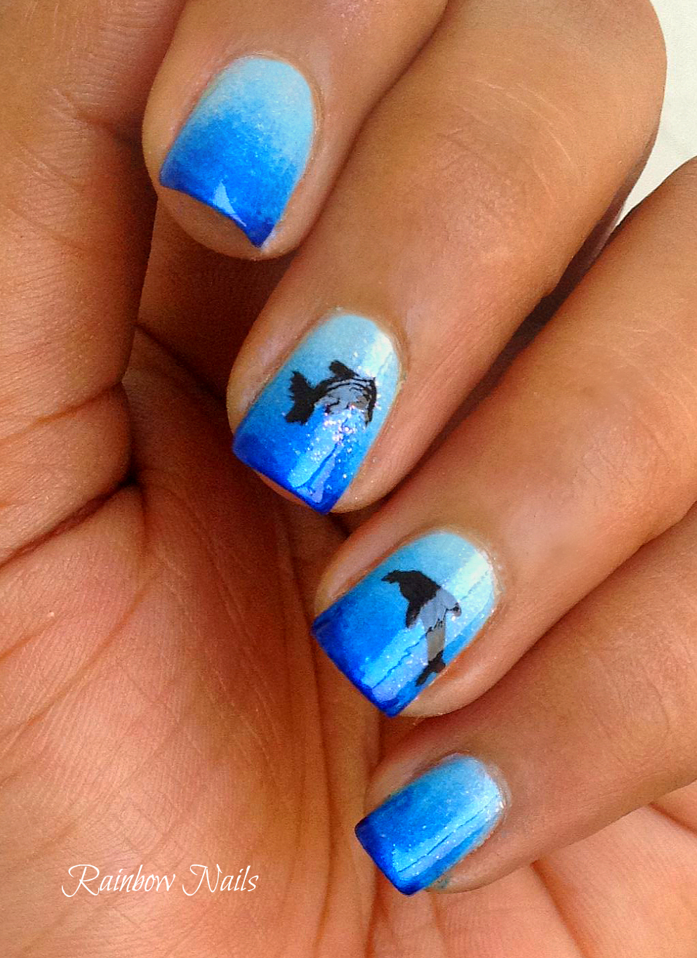 Nail Designs Dolphin | Nail Art Designs