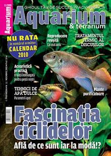 Aquarium & Terrarium - nr 11 Noiembrie 2009 (Profipet)