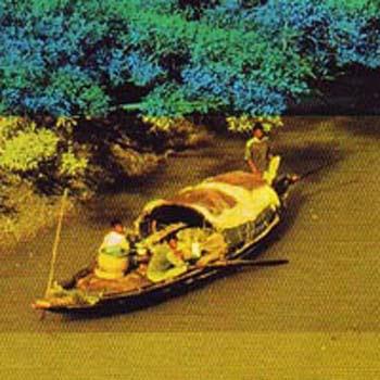 Boat in Sundarban, Bangladesh