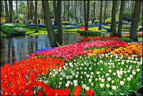 Kategori Relaks Minda - Taman